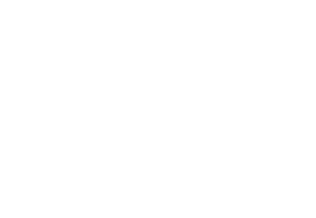 Small Women Minority Owned