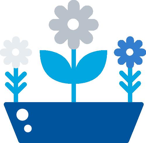 pot of plants
